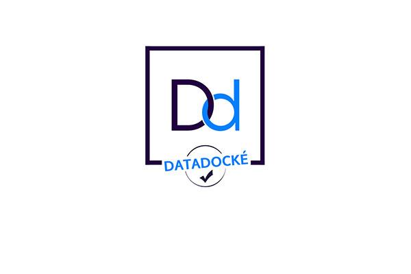 VisuZOOM-Datadock-600x400px